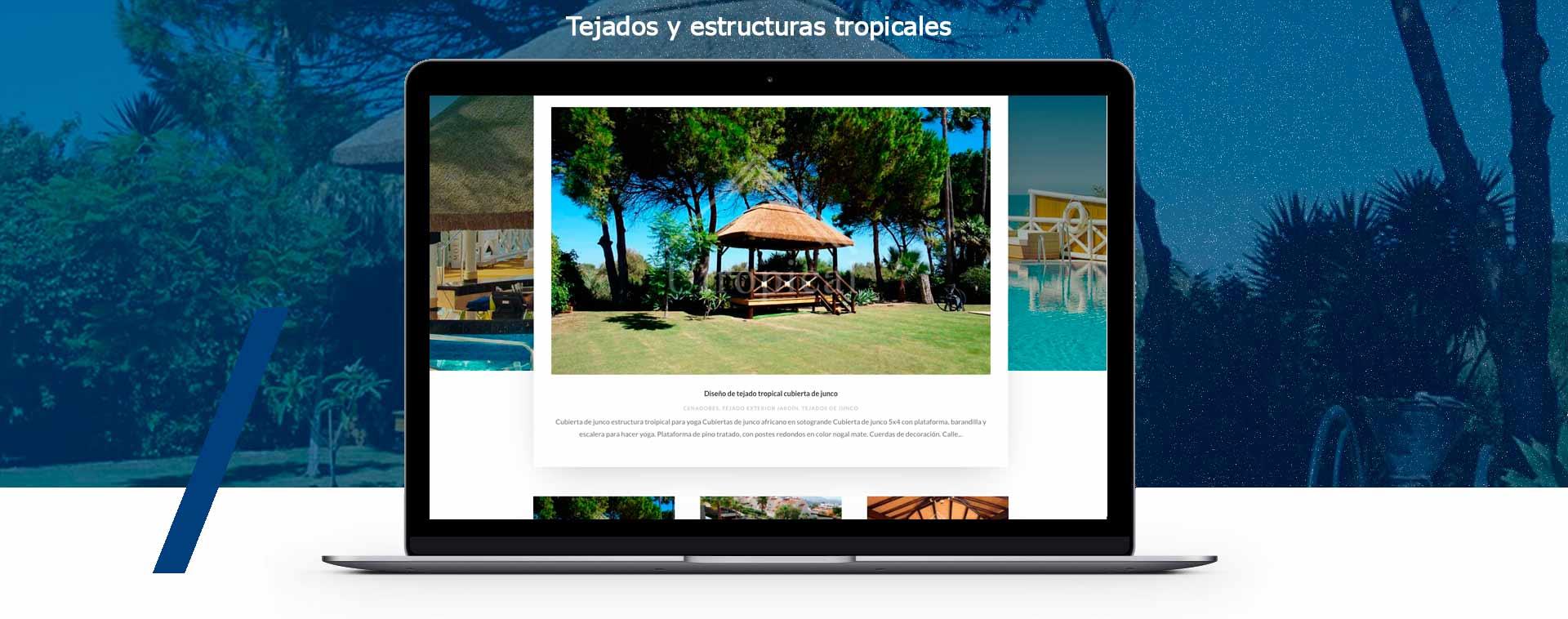 Presentacion diseño web Carpintero tejados tropicales Málaga Mijas